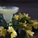 The Perfect Margarita for the Summertime