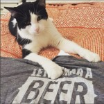 Beer and Books Go Together Like Cats and Napping. Fitzgerald Disagrees.
